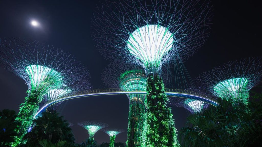 Lightshow at Night: Gardens by the Bay