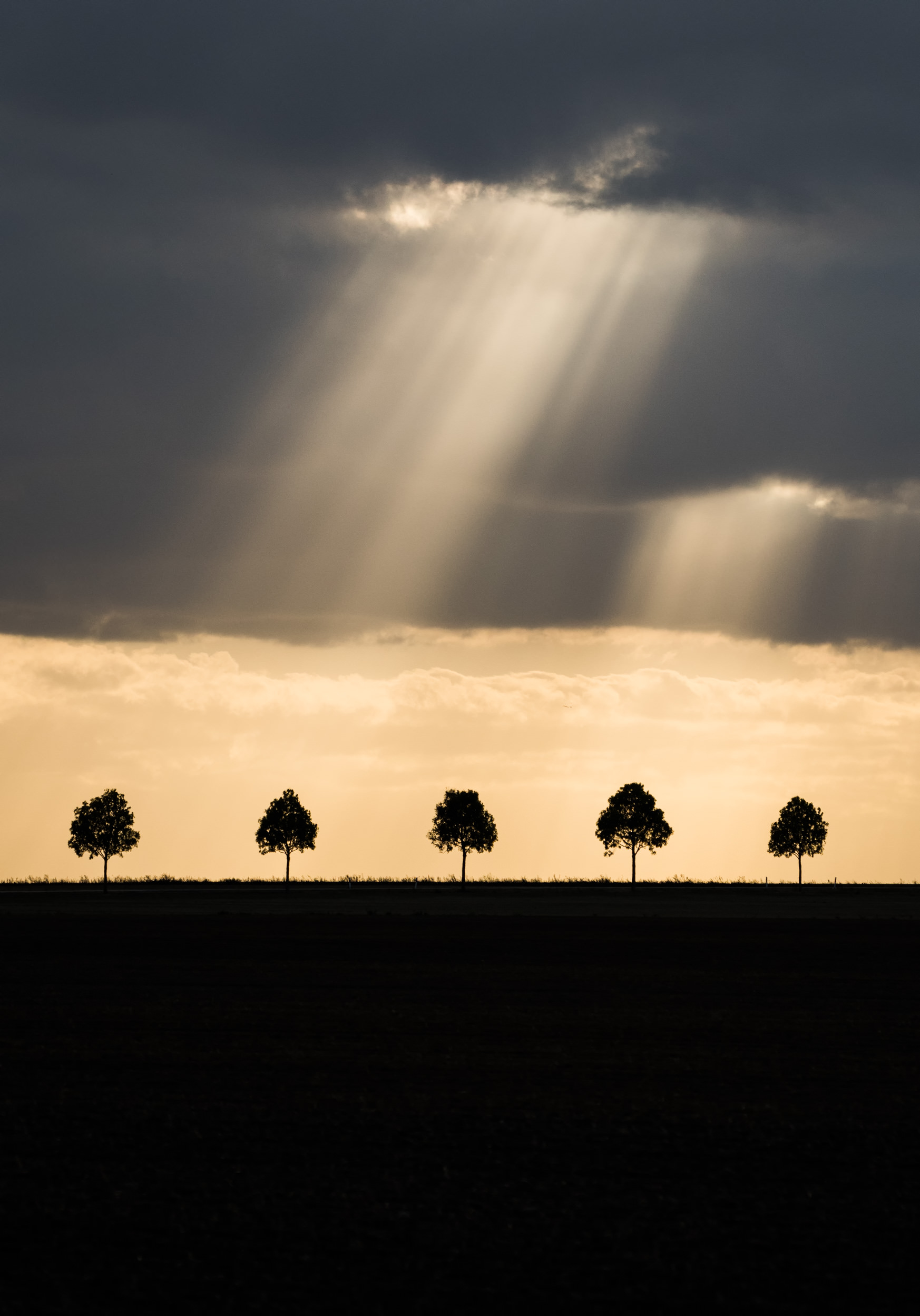 Sunbeams breaking through clouds in Saxony - Landscape Photographer