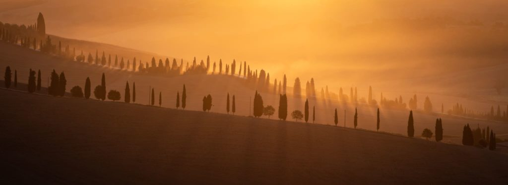 Golden Sunrise at Crete Senesi, Tuscany - Landscape